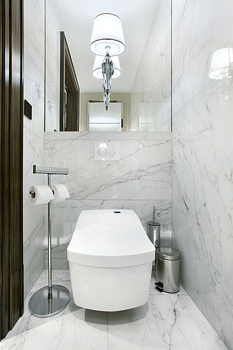 The Royal Penthouse Suite with WASHLET™ at Park Hyatt in Vienna