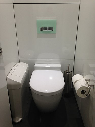 Rimless toilet in a small public stall